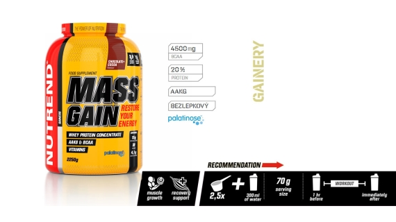 MASS GAIN (GAINER)